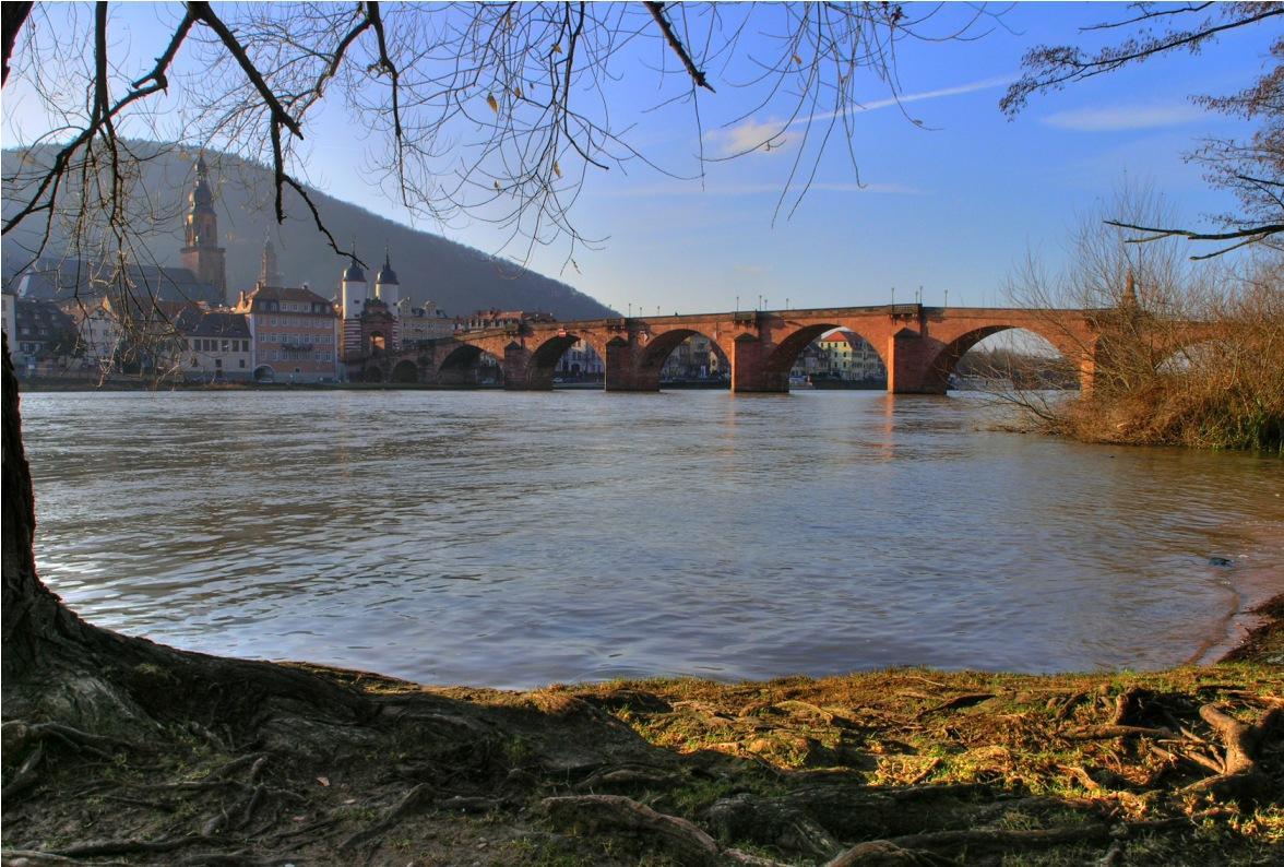 Neckar River - Heidelberg University Hospital - Университетская клиника Гейдельберга